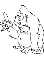 gorilla-coloring-pages-14