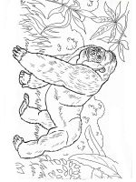 gorilla-coloring-pages-4