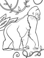 gorilla-coloring-pages-5