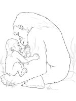 gorilla-coloring-pages-6