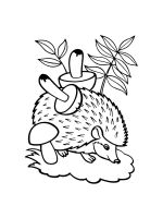 hedgehog-coloring-pages-34