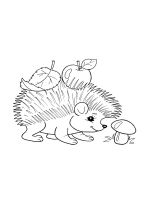 hedgehog-coloring-pages-35