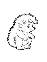 hedgehog-coloring-pages-36