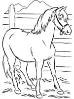 coloring-pages-animals-horse-12