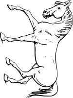 coloring-pages-animals-horse-16