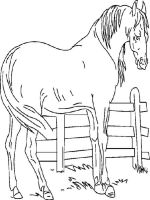 coloring-pages-animals-horse-17