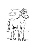 horses-coloring-pages-36