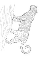 jaguar-coloring-pages-10