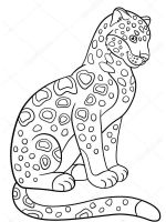 jaguar-coloring-pages-5