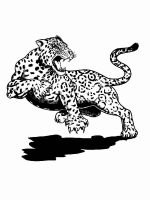 jaguar-coloring-pages-9