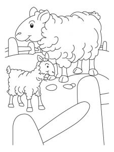 coloring-pages-animals-lamb-11