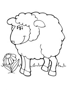 coloring-pages-animals-lamb-16