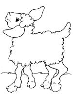 coloring-pages-animals-lamb-17