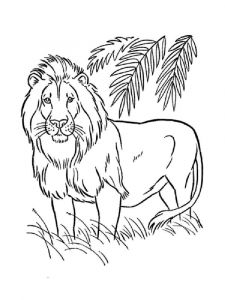 coloring-pages-animals-lion-18