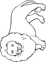 coloring-pages-animals-lion-2