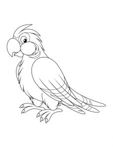 coloring-pages-animals-parrot-14
