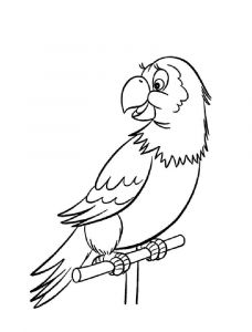 coloring-pages-animals-parrot-3
