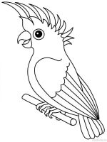 parrot-coloring-pages-15