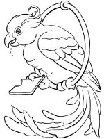 parrot-coloring-pages-16
