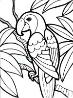 parrot-coloring-pages-9
