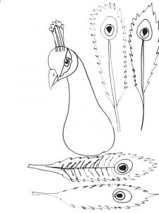 coloring-pages-animals-peacock-7
