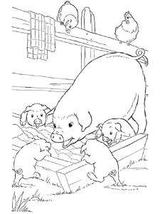 animals-pig-coloring-pages-11