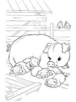 animals-pig-coloring-pages-13