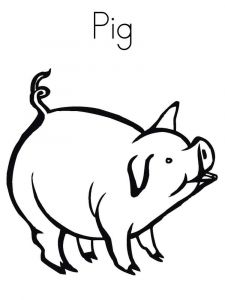 animals-pig-coloring-pages-15