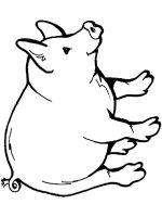animals-pig-coloring-pages-21