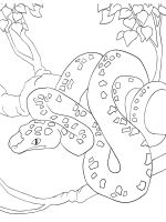 python-coloring-pages-1