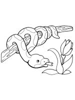 python-coloring-pages-5