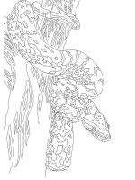 python-coloring-pages-7