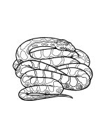 python-coloring-pages-8