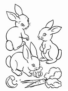 coloring-pages-animals-rabbits-12