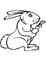 coloring-pages-animals-rabbits-17