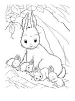 coloring-pages-animals-rabbits-19