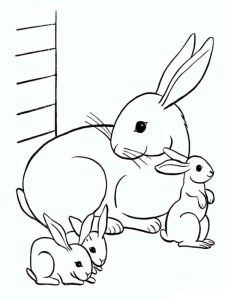 coloring-pages-animals-rabbits-2