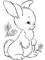 coloring-pages-animals-rabbits-4