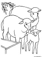 ram-coloring-pages-30