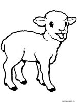 ram-coloring-pages-36