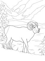ram-coloring-pages-4