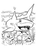 coloring-pages-animals-sharks-13