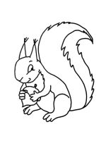 coloring-pages-animals-squirrel-12