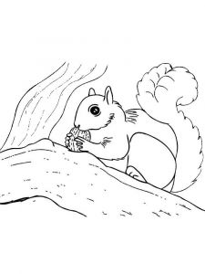 coloring-pages-animals-squirrel-9
