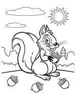 squirrel-coloring-pages-16