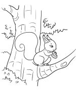 squirrel-coloring-pages-18