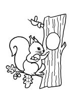 squirrel-coloring-pages-2