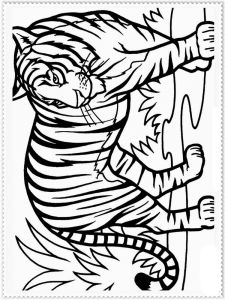 coloring-pages-animals-tiger-11