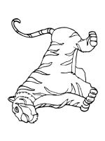 coloring-pages-animals-tiger-15