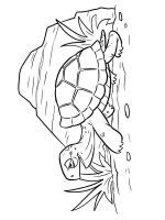 coloring-pages-animals-turtles-20